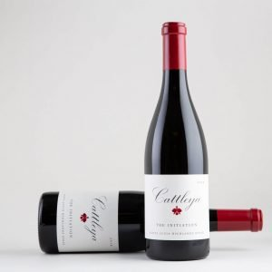 2018 The Initiation Syrah Bottles